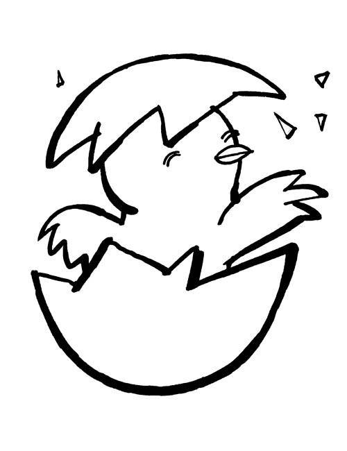 coloriage à dessiner poussin et poule