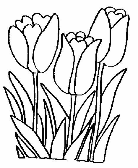 Coloriage de printemps facile - Dessin de printemps a imprimer ...