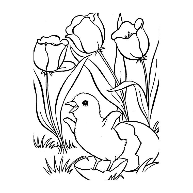 coloriage à dessiner printemps à imprimer gratuit