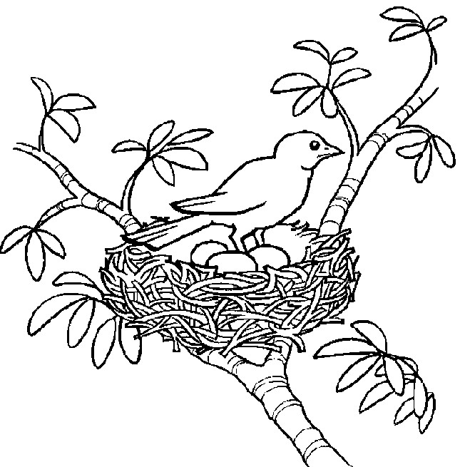 Coloriage Printemps A Imprimer Pdf.Dessin A Colorier Printemps Grande Section