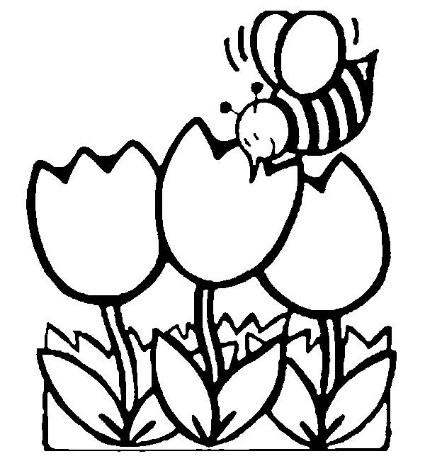 Dessin colorier printemps cp - Dessin bourgeon ...