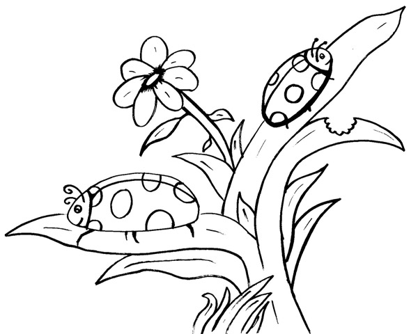 Coloriage dessiner cod sur le printemps - Dessin le printemps ...