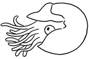 Coloriage de raie - Dessin raie manta ...