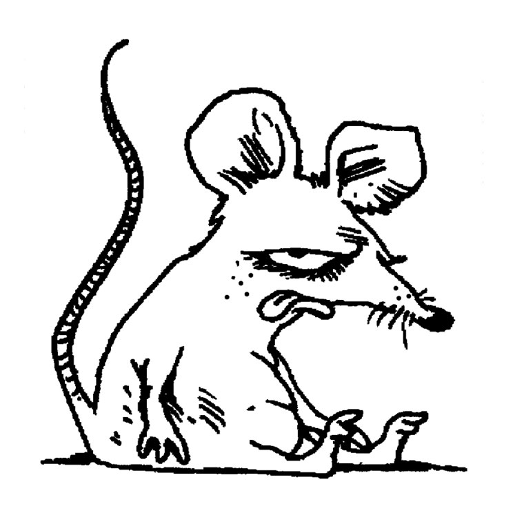 coloriage à dessiner rat des champs