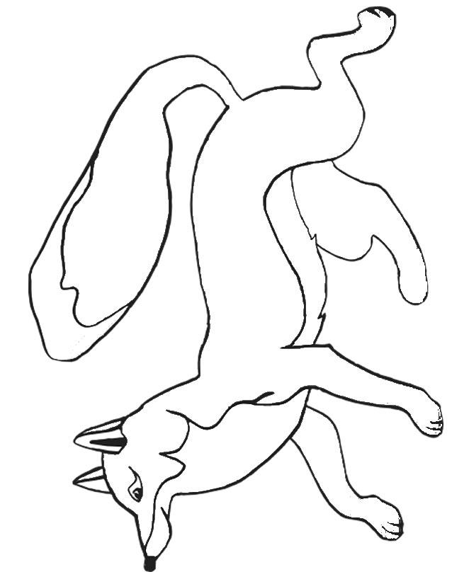 dessin renard gratuit