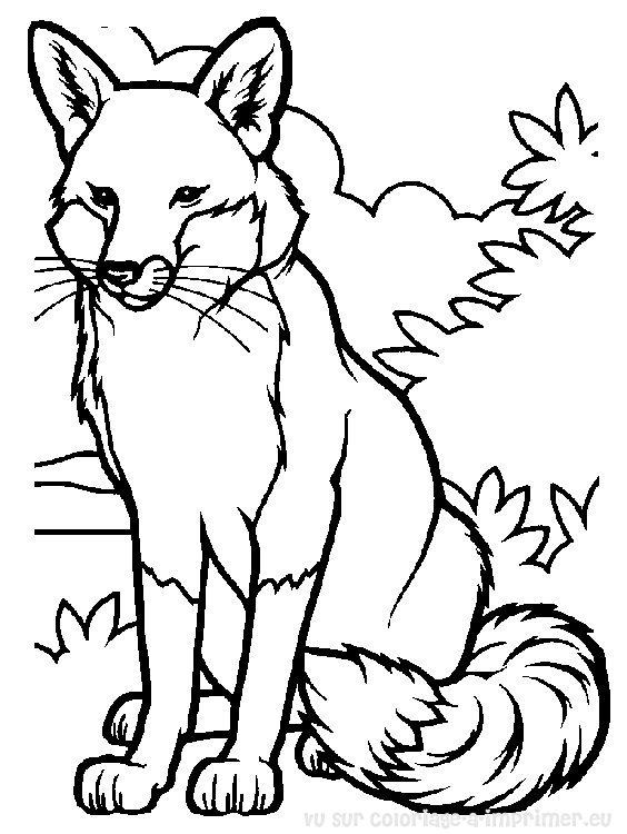 dessin à colorier loup renard