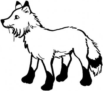 coloriage à dessiner renard polaire