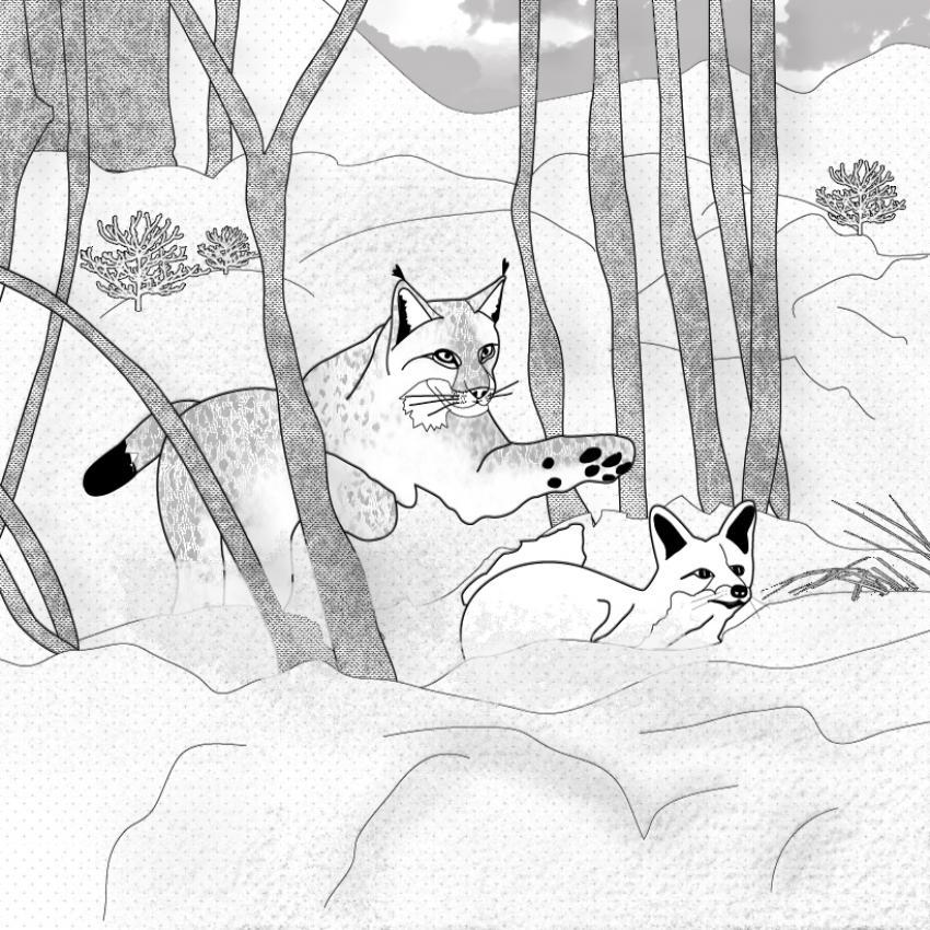 dessin à colorier magique renard