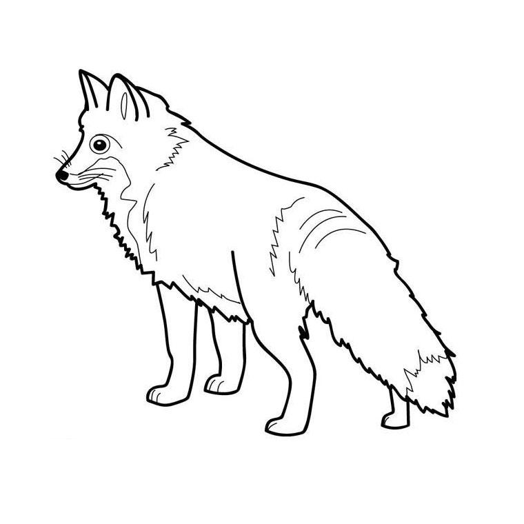 dessin à colorier renard imprimer gratuit