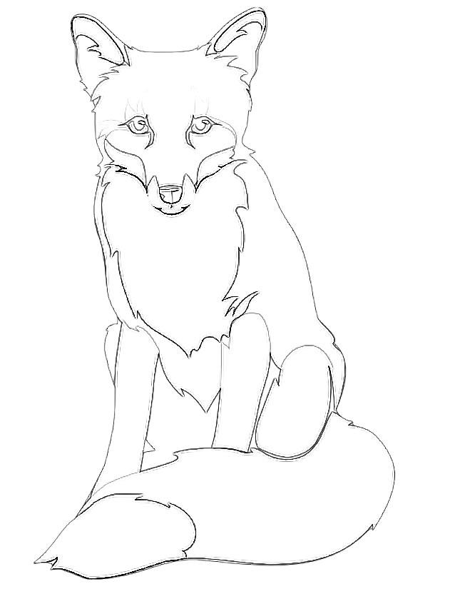 coloriage renard polaire imprimer