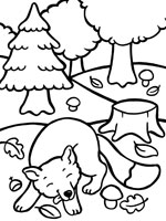 coloriage à dessiner renard à imprimer
