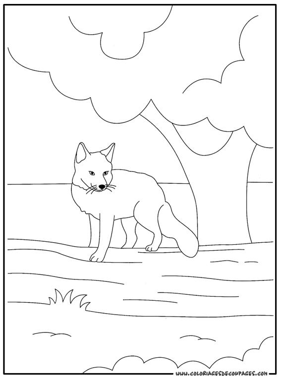Coloriage renard de roule galette - Coloriage corbeau ...