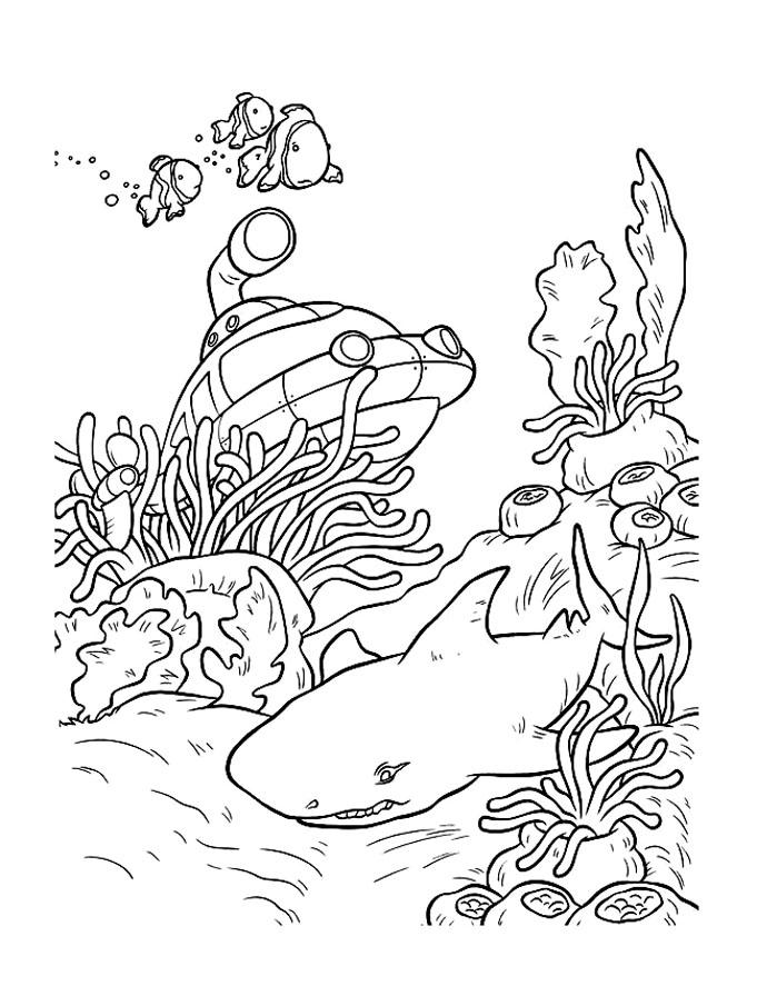 dessin à colorier en ligne requin marteau