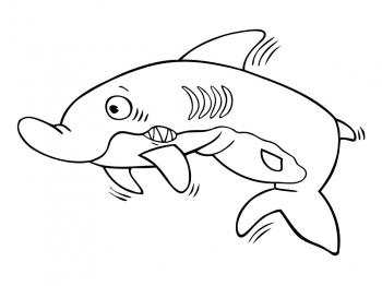 dessin requin gratuit