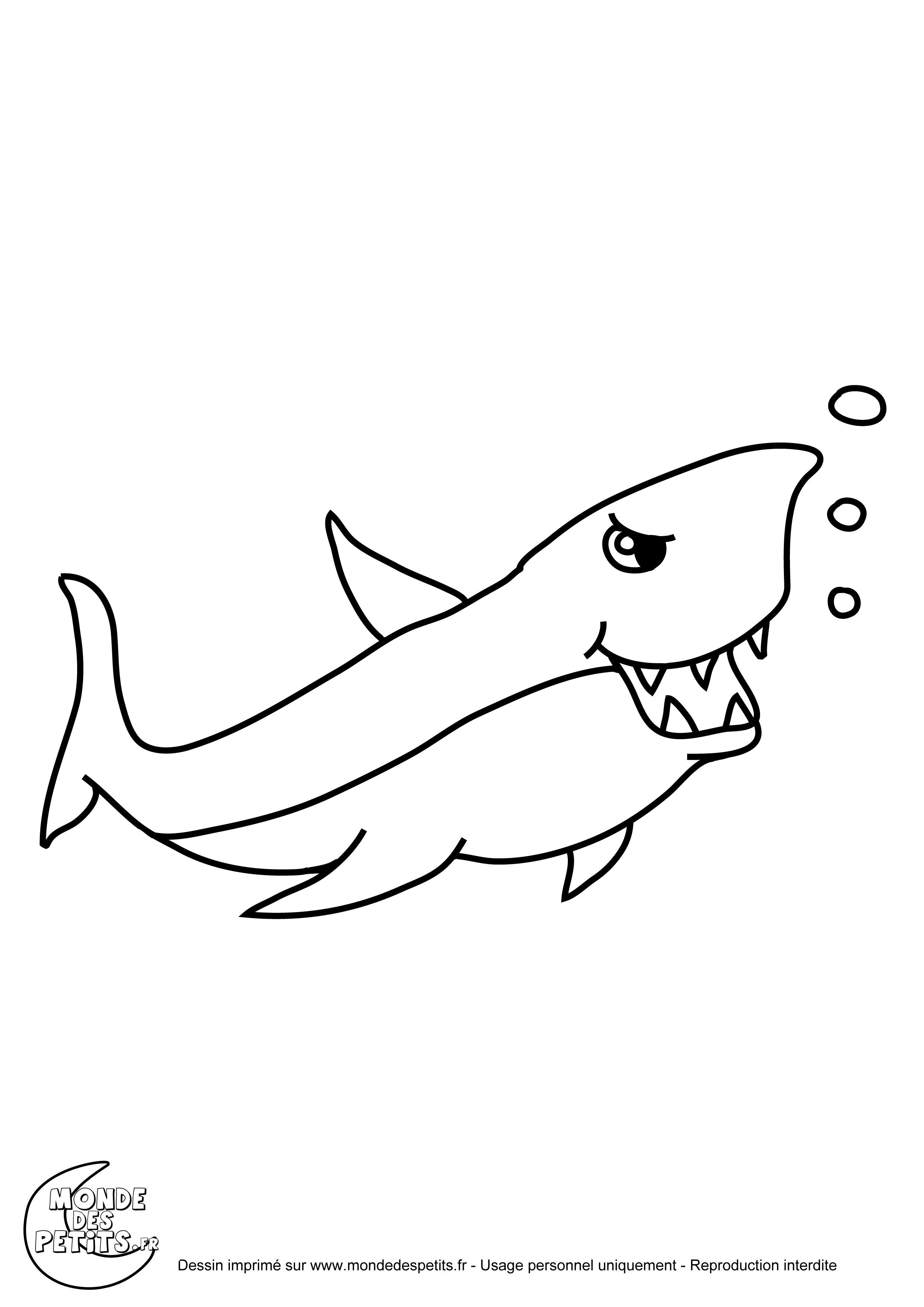 dessin requin baleine dessin