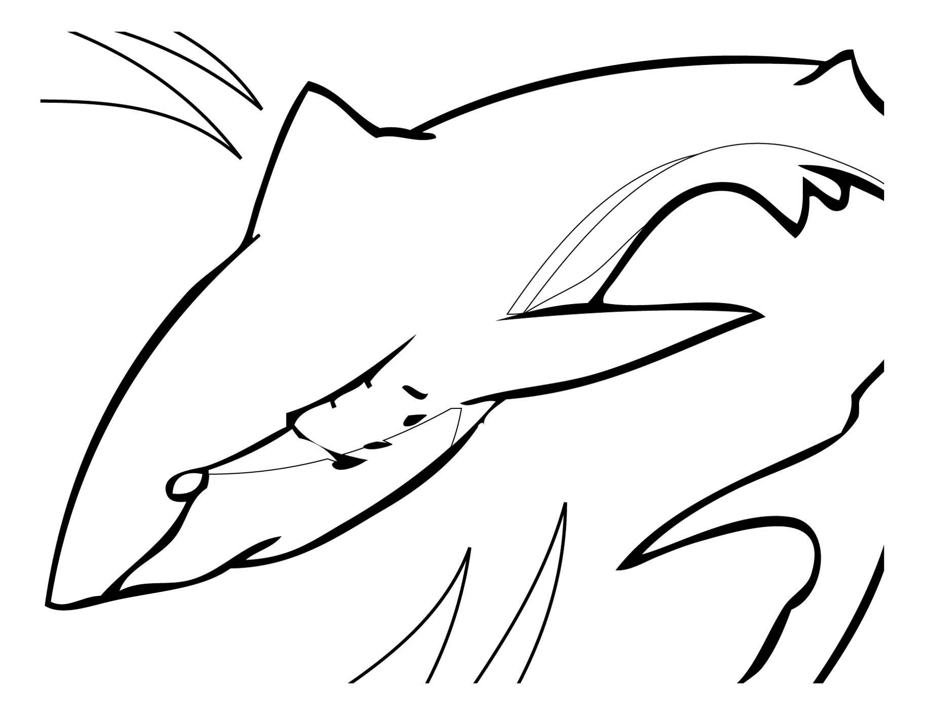 dessin requin mer