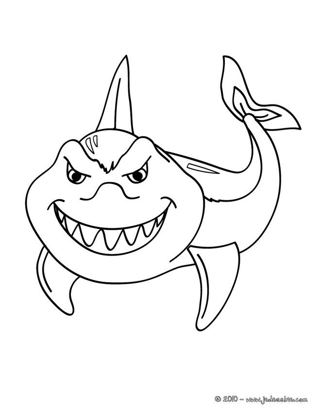 coloriage à dessiner de requin marteau