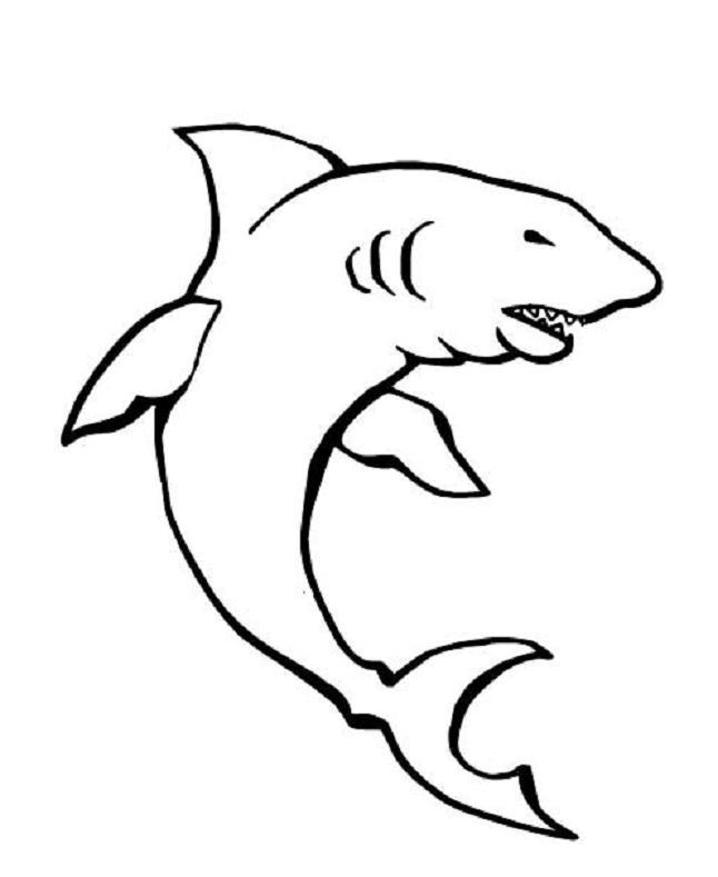 dessin à colorier à imprimer requin