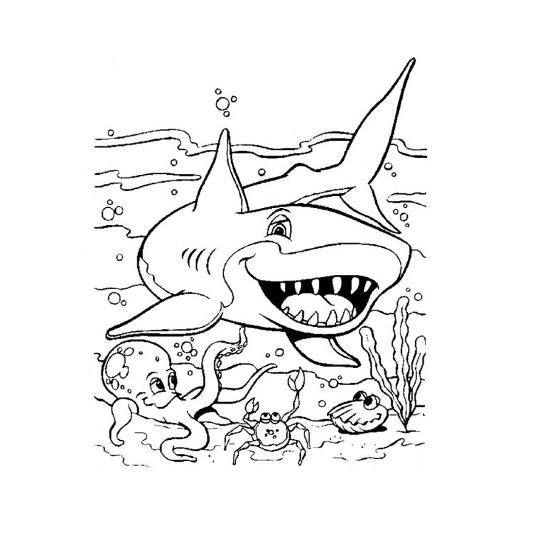 coloriage à dessiner requin bouledogue