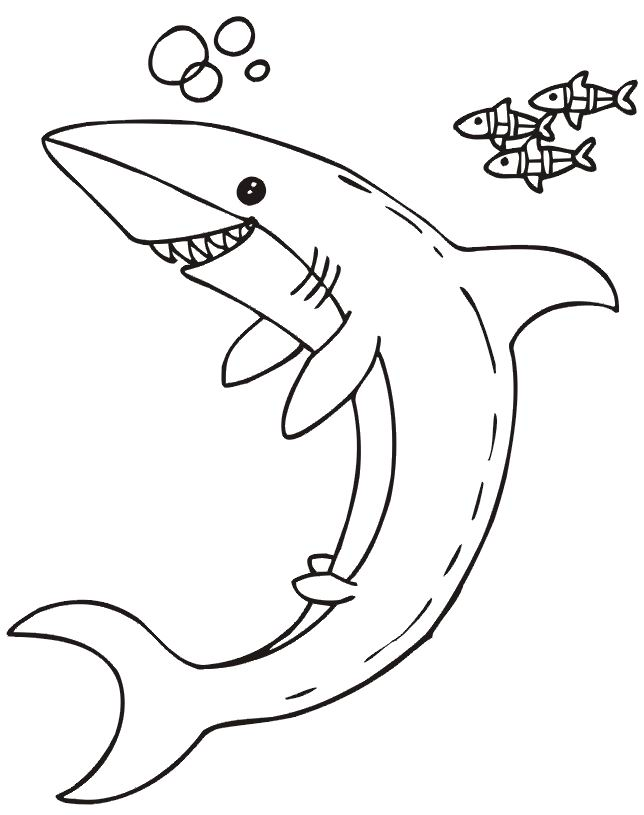 coloriage à dessiner requin baleine a imprimer