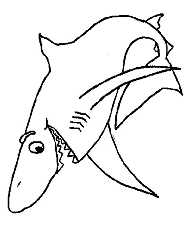 coloriage à dessiner requin facile