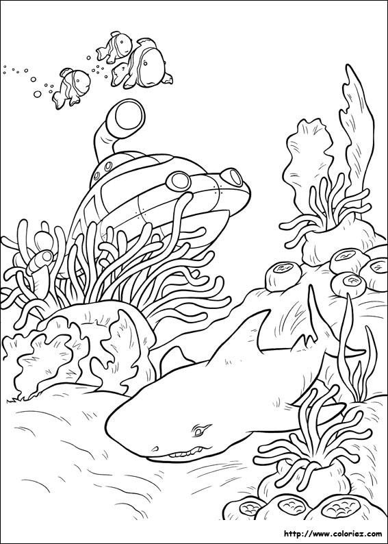 coloriage à dessiner d'un requin