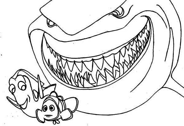 Coloriage dessiner de requin blanc a imprimer - Dessiner un requin blanc ...