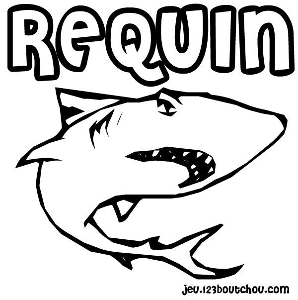 coloriage à dessiner requin à imprimer