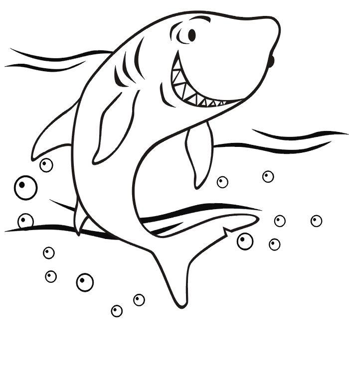 dessin en ligne gratuit requin