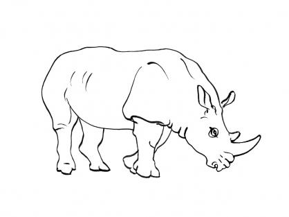 Coloriage dessiner rhinoceros - Rhinoceros dessin ...