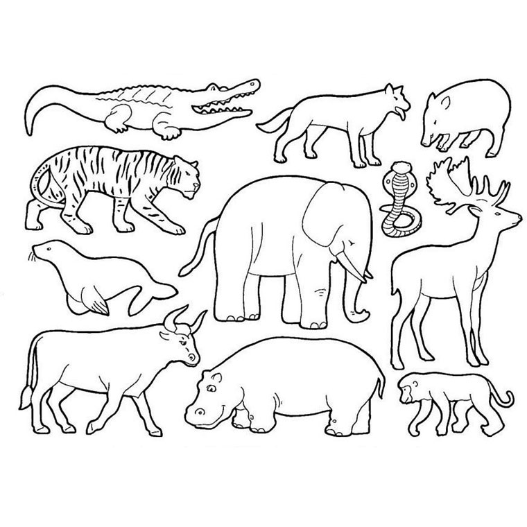 dessin de rhinoceros a imprimer