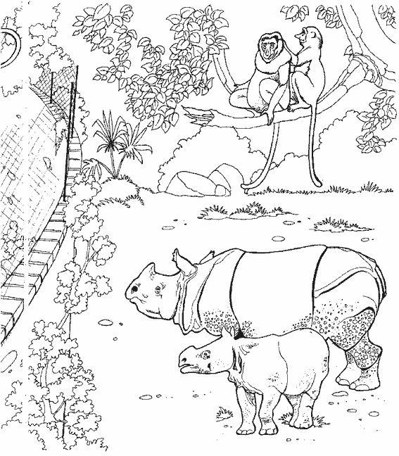 Coloriage En Ligne Rhinoceros.Coloriage A Dessiner Rhinoceros Ligne