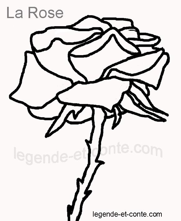 Dessin de rose facile - Rose coloriage ...