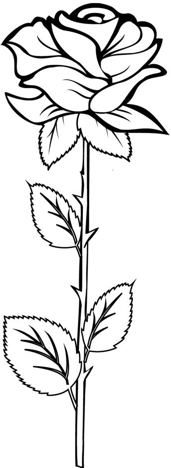 coloriage à dessiner flamant rose imprimé