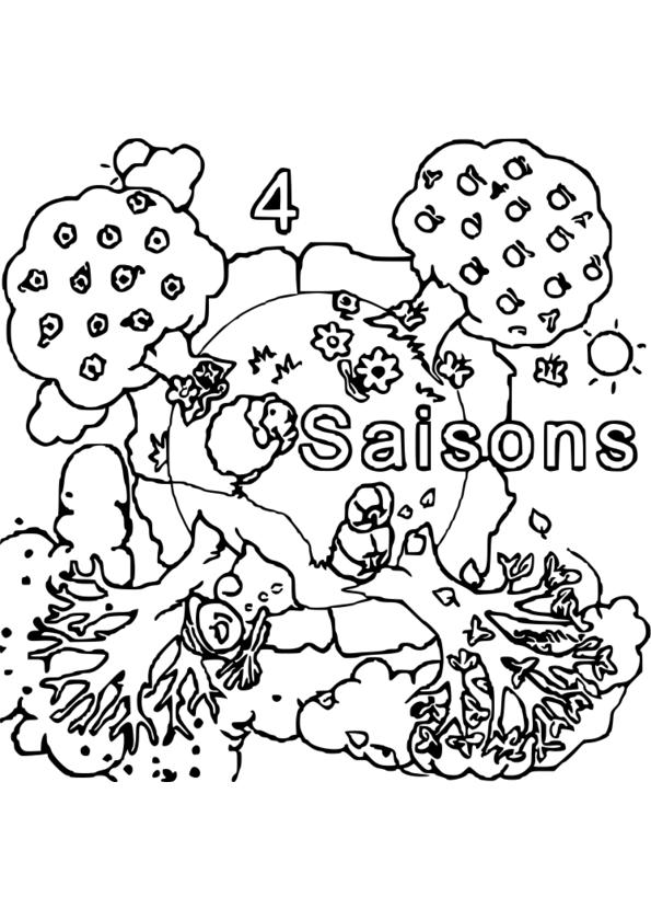 dessin à colorier saisons
