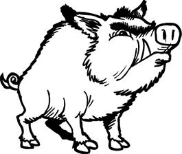dessin à colorier de sanglier et de cerf