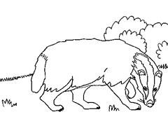 coloriage à dessiner de chasse au sanglier a imprimer