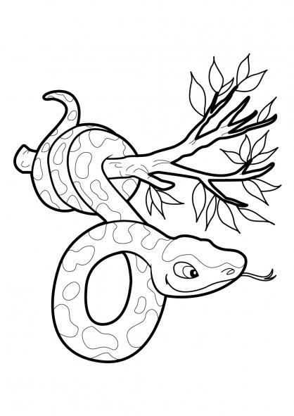 coloriage serpent en ligne gratuit