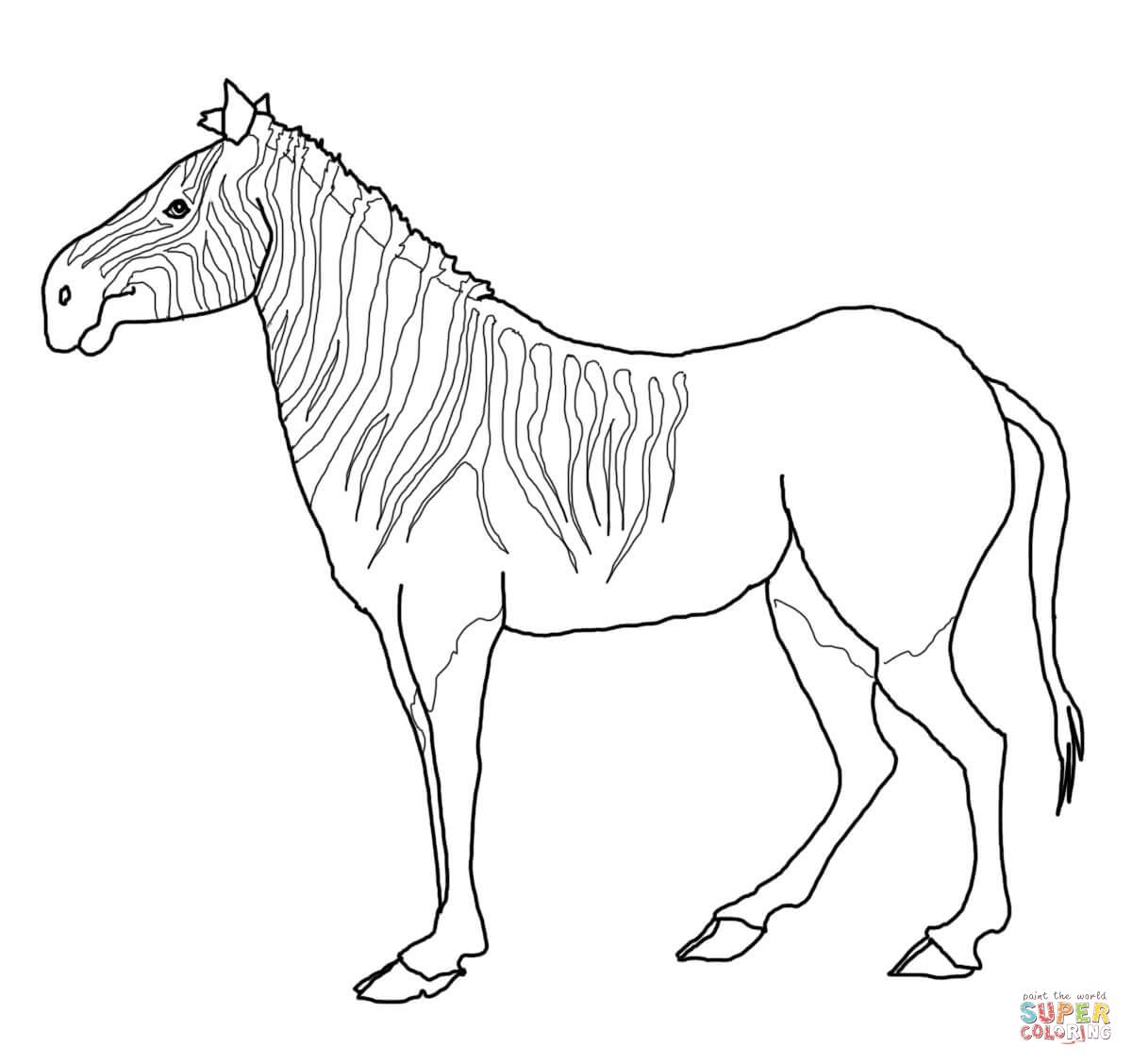 20 dessins de coloriage silhouette z bre imprimer - Coloriage zebre a imprimer ...