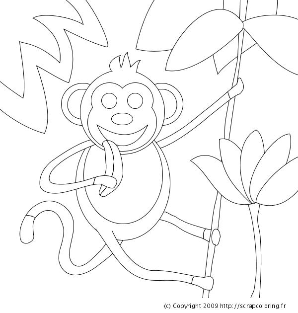 18 dessins de coloriage singe arbre imprimer - Dessin d un gorille ...