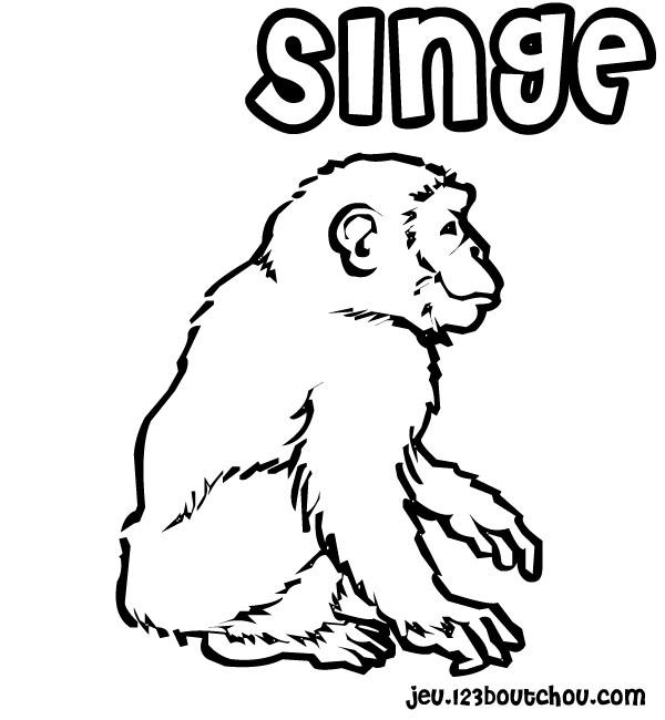 coloriage à dessiner singe banane