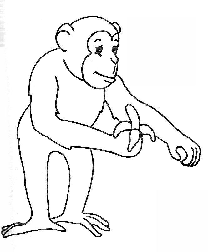 Coloriage dessiner singe - Singe a dessiner ...