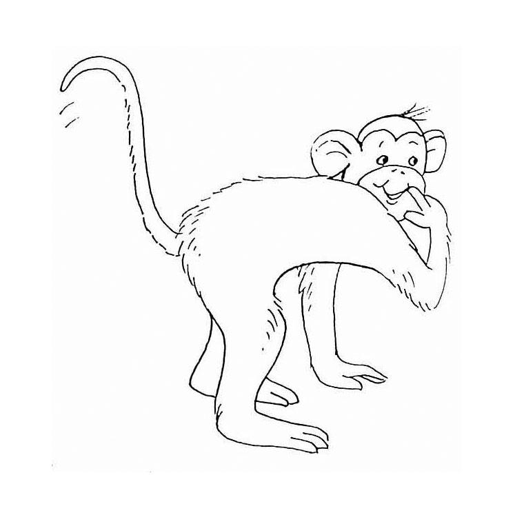 dessin à colorier de singe dans la savane