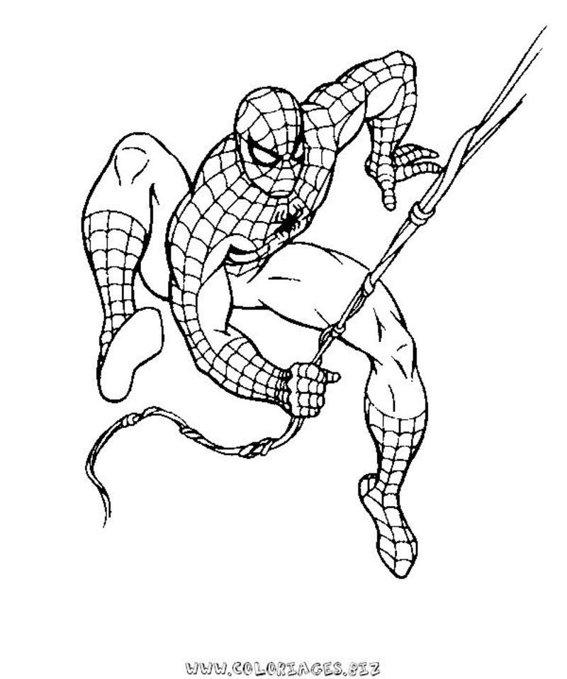 20 dessins de coloriage spiderman en ligne imprimer - Dessin spiderman facile ...