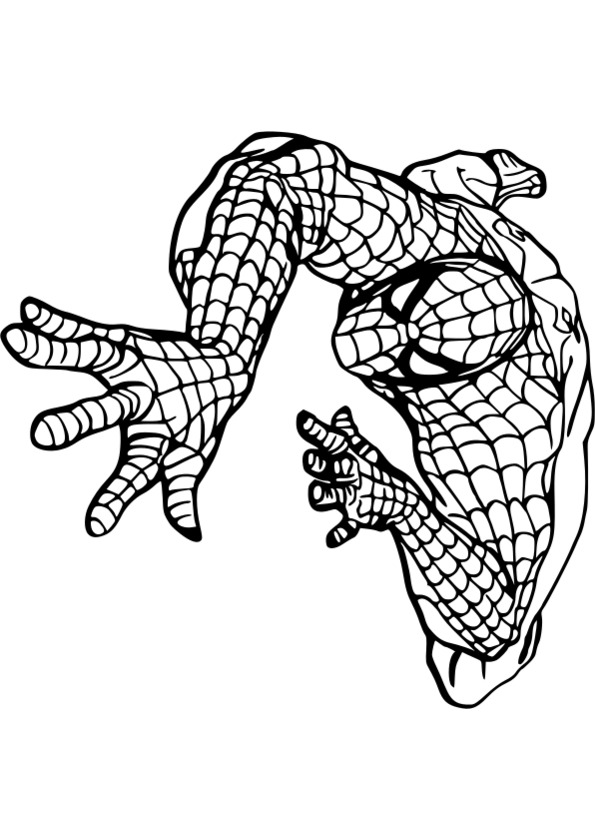 coloriage de spiderman gratuit