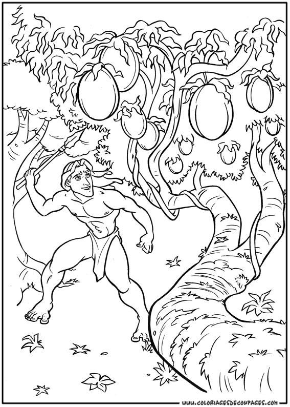 dessin de tarzan a imprimer
