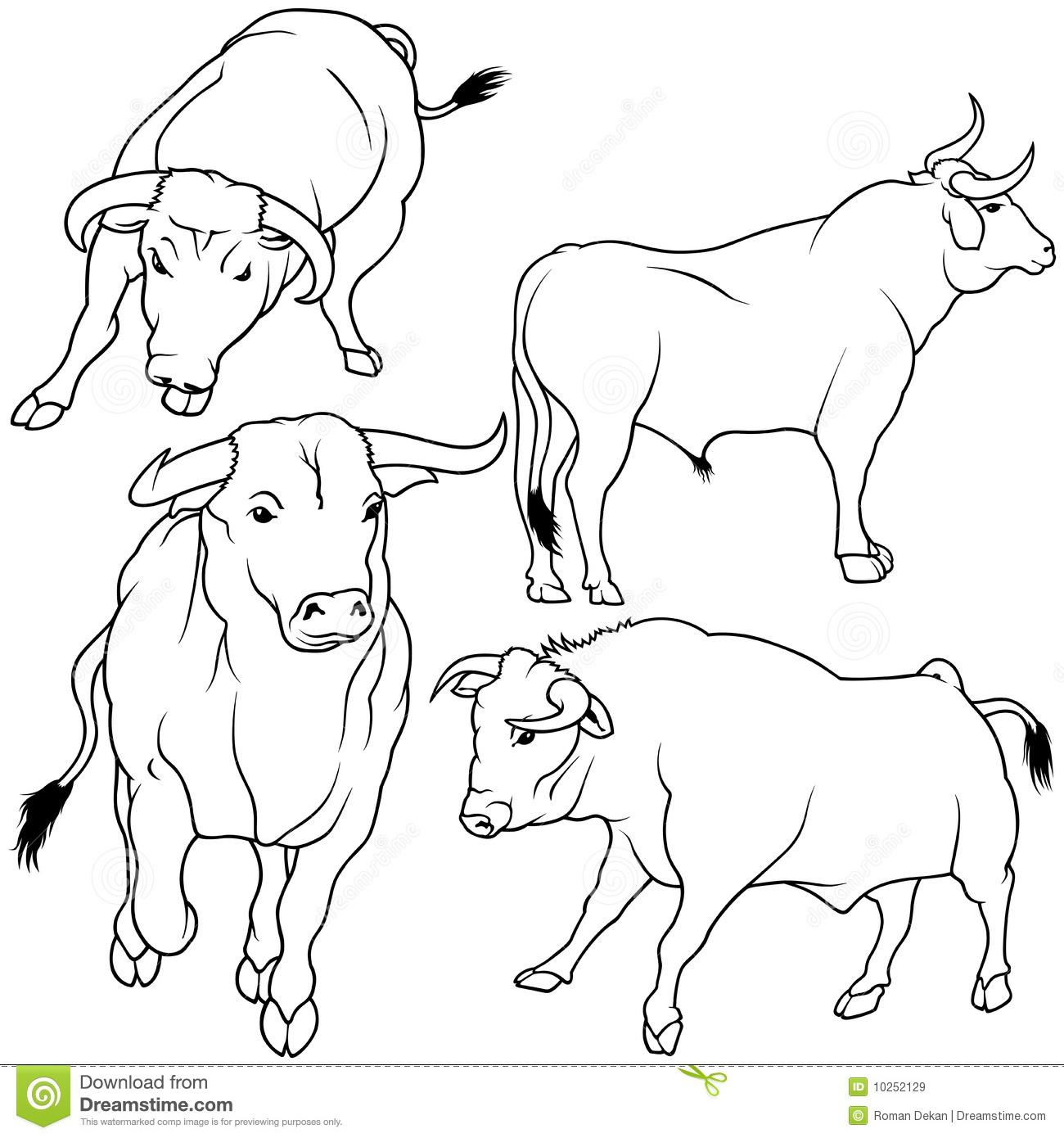 dessin à colorier taureau en ligne