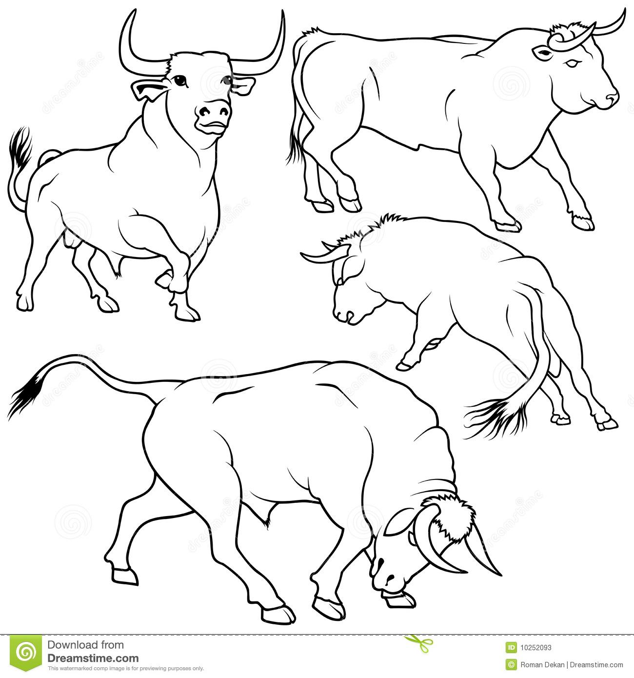 coloriage taureau vache veau