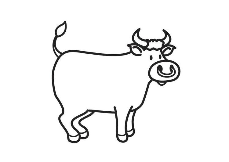 coloriage de taureau camarguais