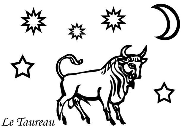 imprimer coloriage taureau
